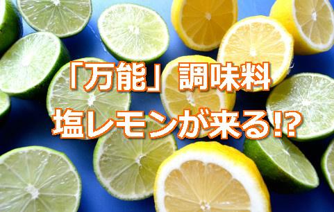 万能調味料の塩レモン